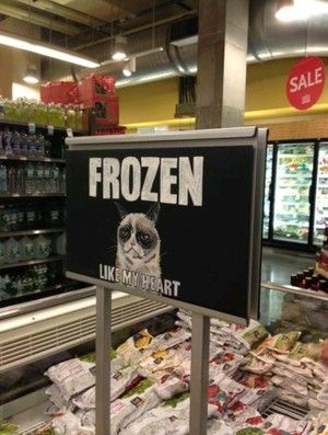 Frozen section of shop