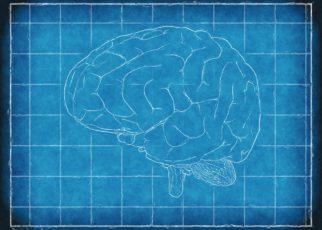 brainy-hacks